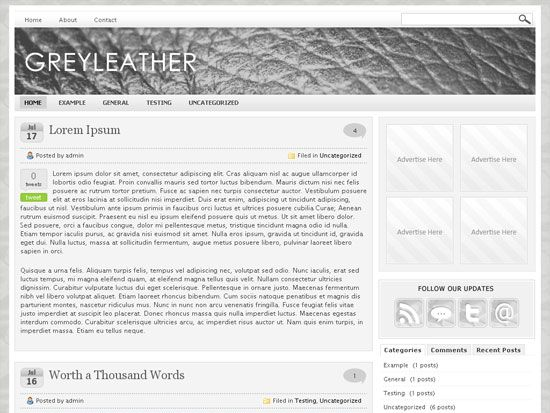 Grey Leather Wordpress Premium Theme